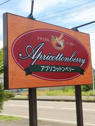 Apricottonberry_005
